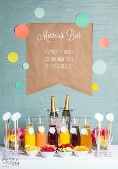 http://blog.smartyhadaparty.com/mimosa-bar/