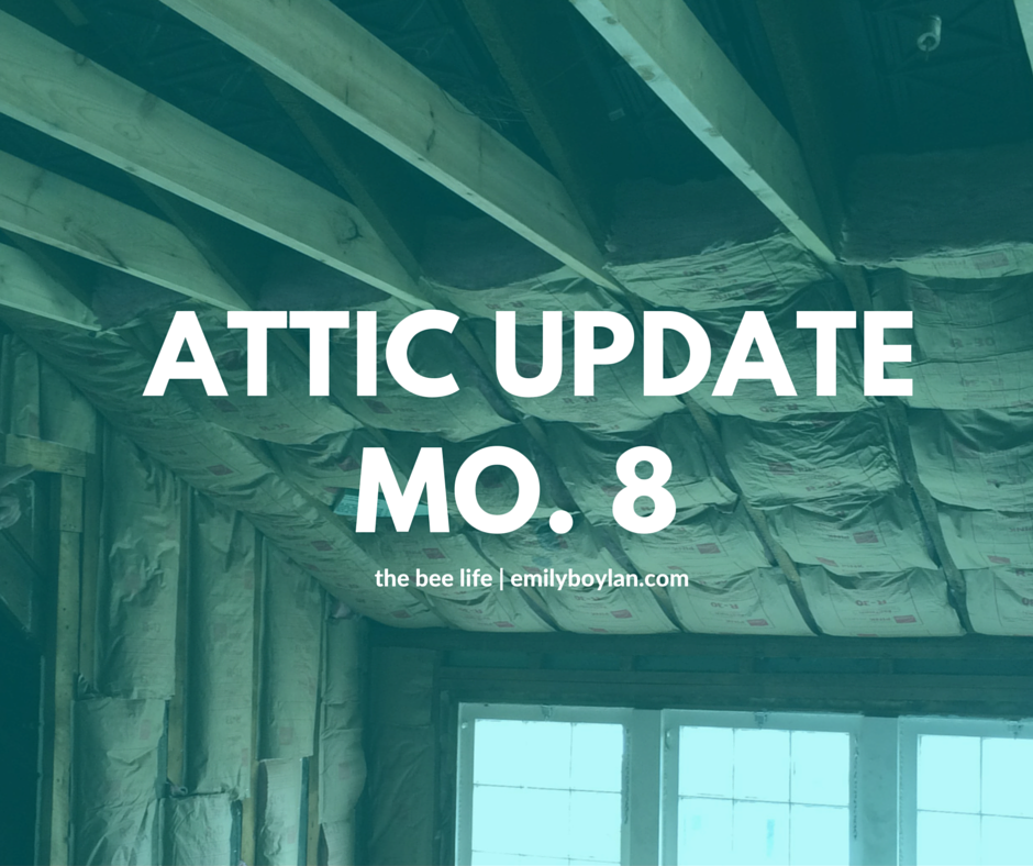 Attic Update Month 8 - the bee life
