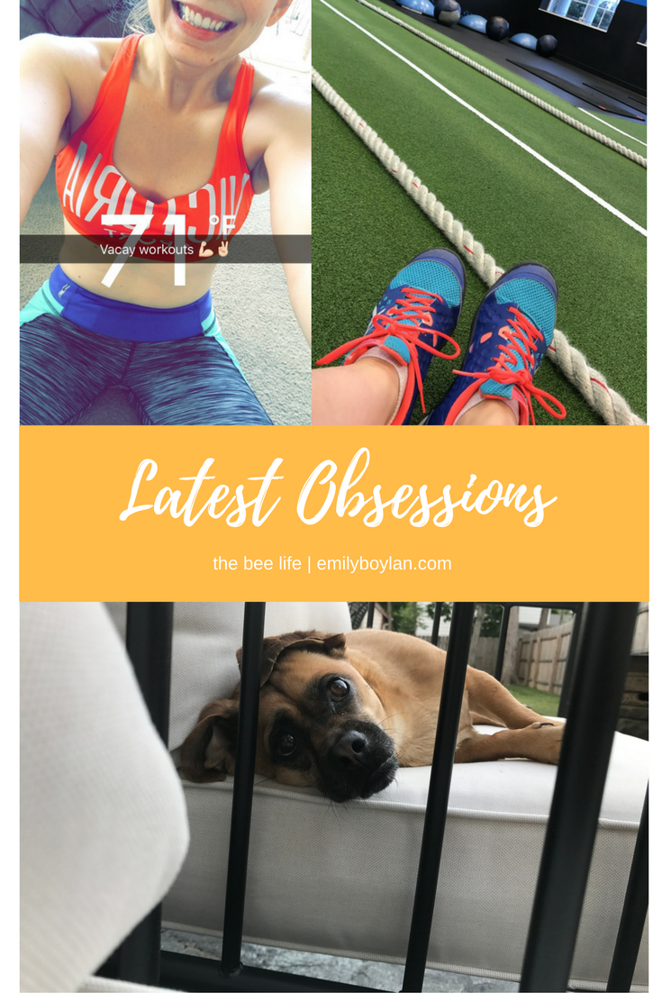 Latest Obsessions 06.17 - the bee life