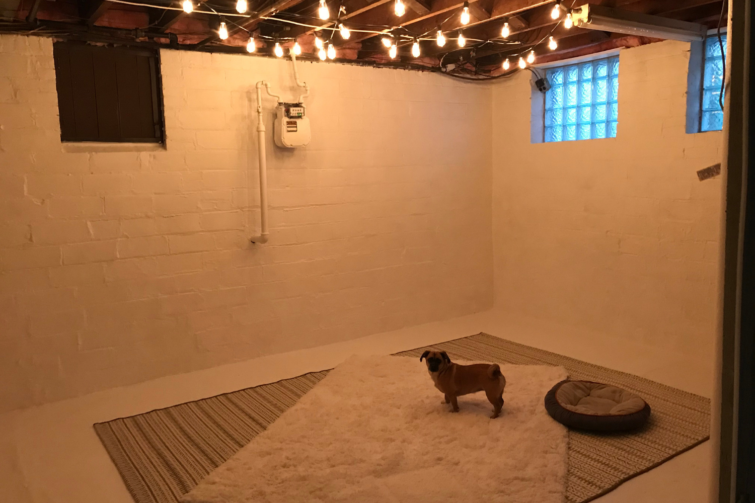 Basement Makeover - Checkin - the bee life (2)